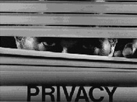 Of private recordings and privacy in the digital age