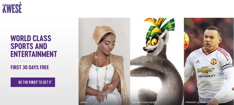 Econet, Kwese TV, Pay TV, African Media, Strive Masiyiwa