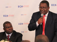 While Zimswitch waits, Econet chooses to partner banks directly with EcoCash