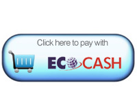 University student develops EcoCash internet payments proof of concept