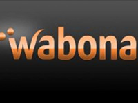 Wabona and the internet opportunity for pay-per-view video streaming in Africa