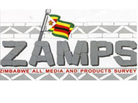 Why the ZAMPS Internet usage survey results are inadequate