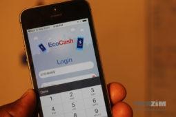 EcoCash App, EcoCash WhatsApp scam