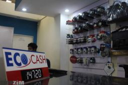 EcoCash Agents, Merchants, Bank to wallet, RBZ, win a cow promotion account hijacks